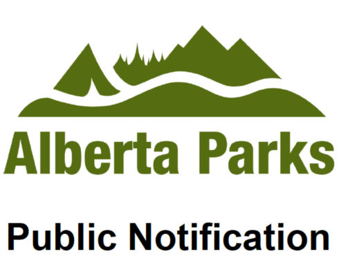 Parks Removing Logs in WBC Thurs Oct 26