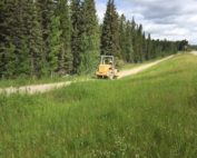 Banded Peak Trail Project