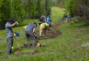 Bragg Creek All-Season Trails