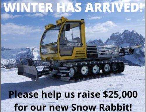 Winter is Coming – Let's Get Grooming!!